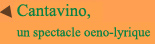Cantavino2
